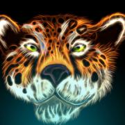 JaguarJK