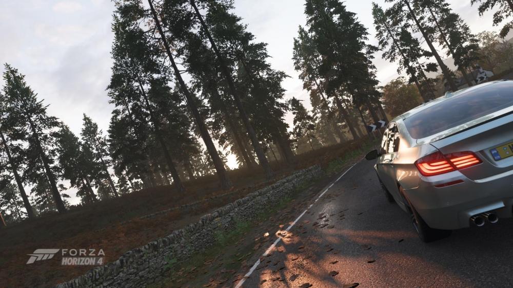 Forzagmw.thumb.jpg.fd6966213f057f22aa694b12dd4faed3.jpg