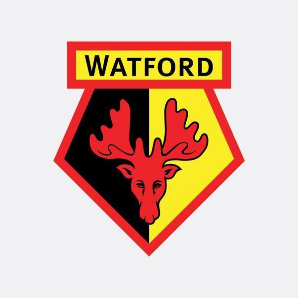 Watford_05_grande.jpg.c655bba1d1e073f62031febcc57571c8.jpg